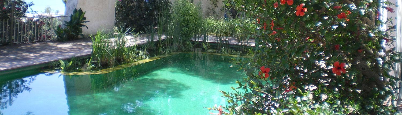 piscinas naturales publicaciones